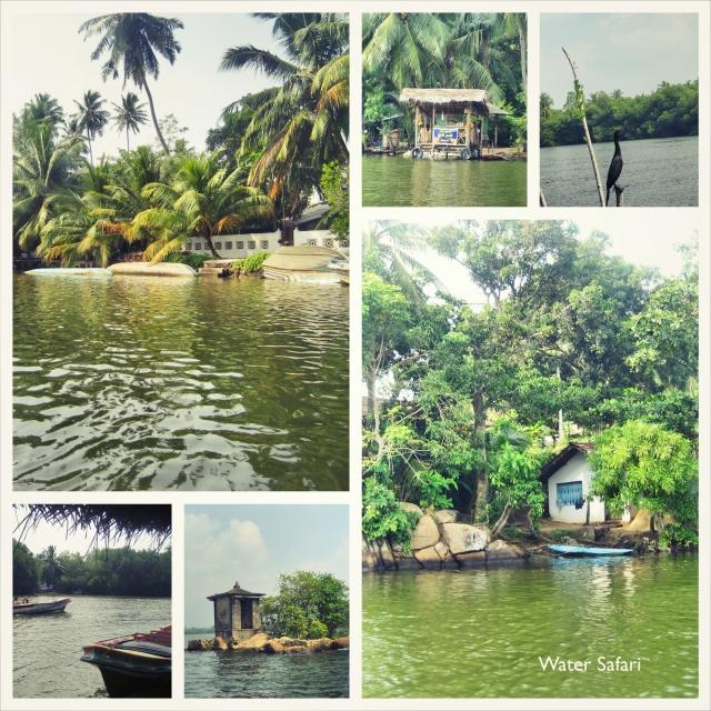 Water Safari_Fotor